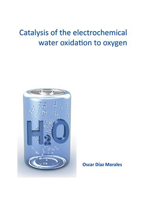 Phd thesis catalysis